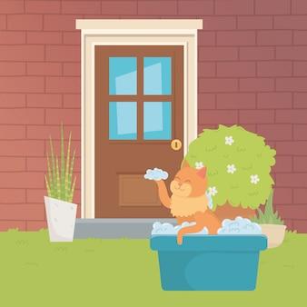 Ilustrador de vetor de desenho de gato dos desenhos animados