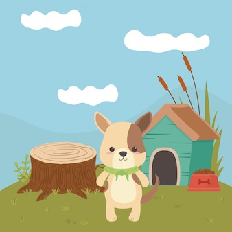 Ilustrador de vetor de desenhos animados de cão