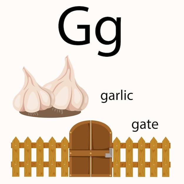 Ilustrador de vocabulário g