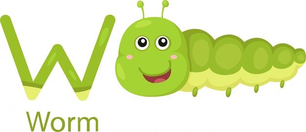 Ilustrador de w com worm