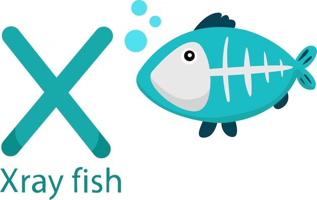 Ilustrador de x com peixe raio x