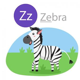 Ilustrador de z para zebra animal