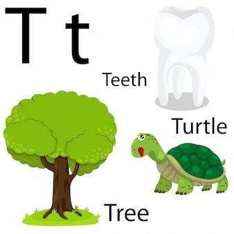 Ilustrador do alfabeto t