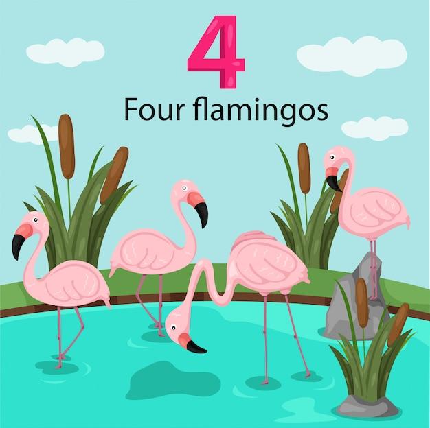 Ilustrador do número quatro com flamingos