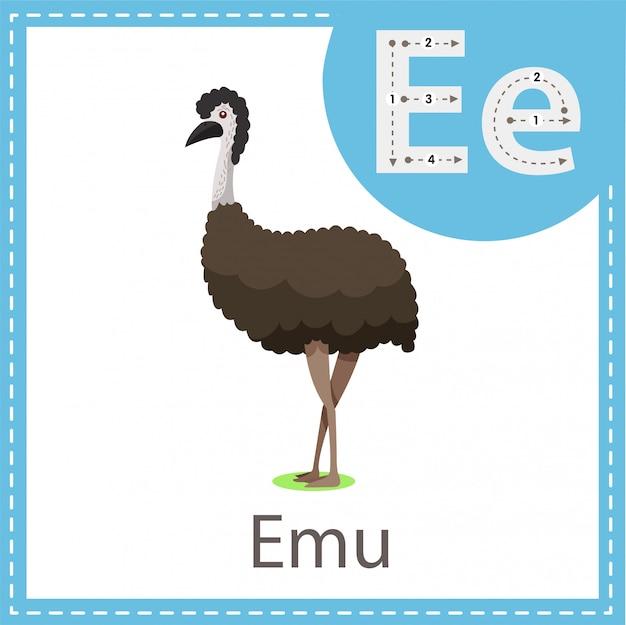 Ilustrador do pássaro emu