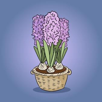 Imagem colorida de flor jacinto