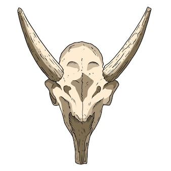 Imagem desenhada à mão do crânio fossilizado de saiga. desenho de imagem fóssil de ossos de animais de antílope com chifres. silhueta de contorno de estoque vetorial