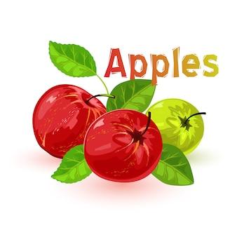 Imagem mostra belas maçãs vermelhas e verdes suculentas com folhas no estilo cartoon de fundo branco