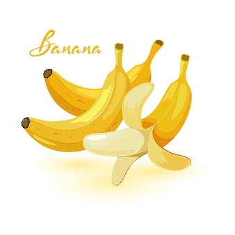 Imagem vetorial de desenho animado mostra bananas maduras inteiras e descascadas.