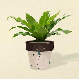 Imagem vetorial de planta, decoração de interiores em vasos de samambaia com ninho de pássaro