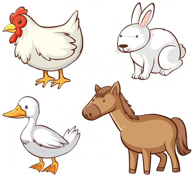 Imagens isoladas de animais de fazenda