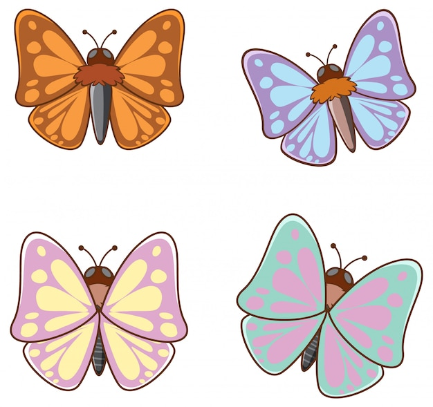 Imagens isoladas de borboletas