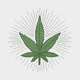 Impressão de folha de cannabis. selo de maconha com raio de sol. rótulo em estilo vintage hipster. design gráfico para roupas, t-shirt, vestuário, logotipo. ilustração vetorial.