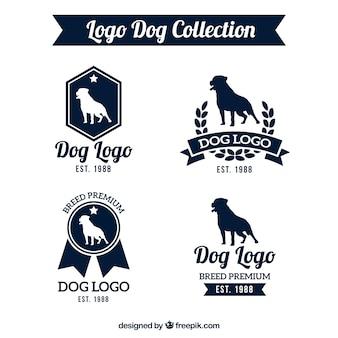 Impressionante pacote de logos cão
