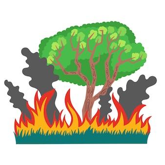 Incêndio florestal, fumaça de grama desastre ecológico incêndios florestais na austrália