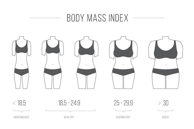 Índice de massa corporal, ilustração vetorial, figura feminina