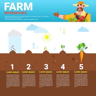 Infografia de agricultura eco friendly orgânico natural vegetal crescimento fazenda produção banner
