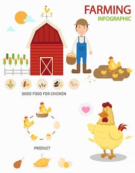 Infografia de fazenda de galinha, ilustração