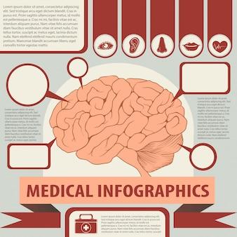 Infografia médica com cérebro e texto