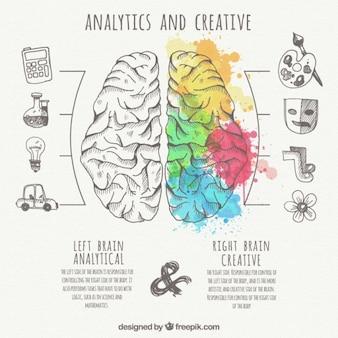 Infográfico cérebro com partes analíticas e criativas
