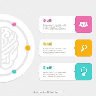 Infográfico cérebro fantástica com detalhes da cor