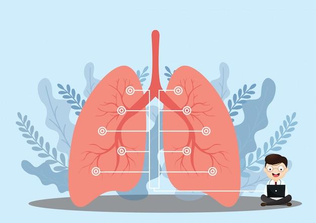 Infográfico de anatomia pulmonar