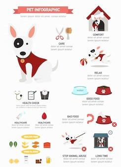 Infográfico de cão, cartaz informativo pronto para imprimir