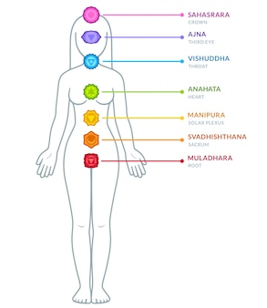 Infográfico de chakras do corpo masculino