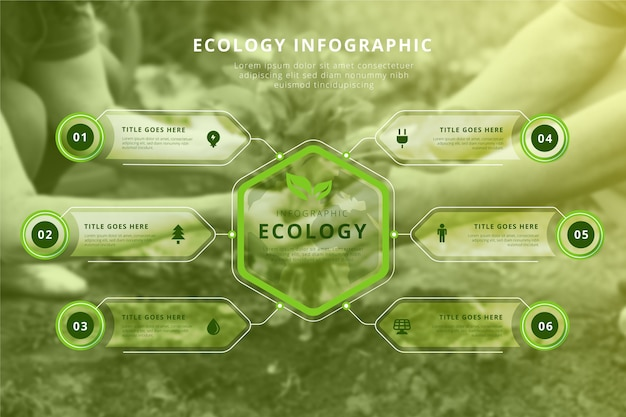 Infográfico de ecologia com conceito de foto