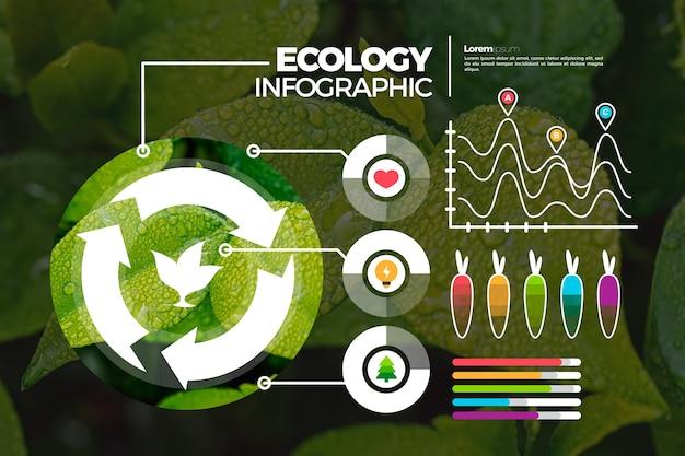 Infográfico de ecologia com foto