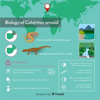 Infográfico de fundo ecossistema com animais no habitat