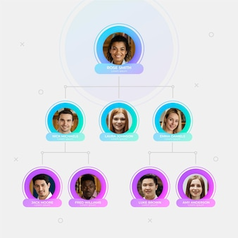 Infográfico de organograma com foto