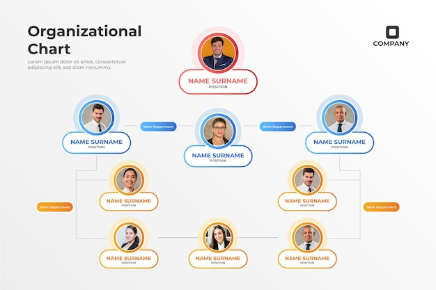Infográfico de organograma gradiente com foto