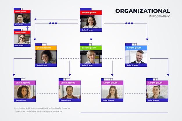 Infográfico de organograma linear e plano com foto
