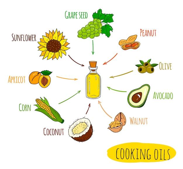 Infográfico desenhado de mão de tipos de óleo de cozinha