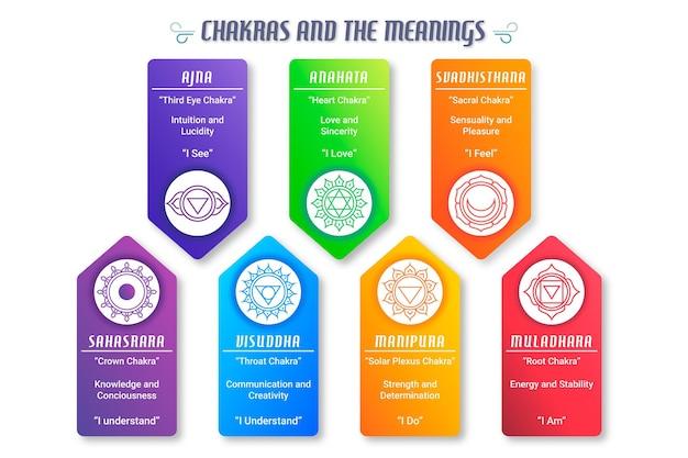 Infográfico do conceito de chakras do corpo
