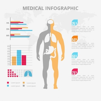 Infográfico médica plana