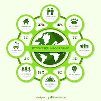 Infográfico moderno ecossistema com design plano