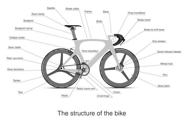 Infográfico plano da estrutura de uma bicicleta multi-velocidade