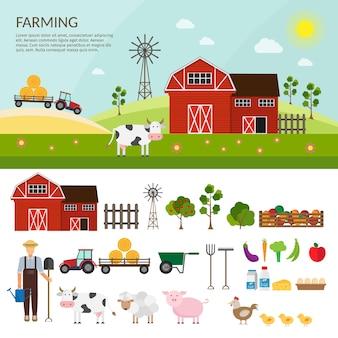 Infográfico plano de fazenda colorida.