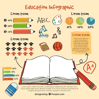 Infográfico sobre as crianças da educação