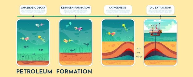 Infographics do vetor dos desenhos animados da formação do petróleo com fases do processo