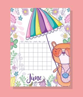 Informações de calendário de junho com esquilo e plantas