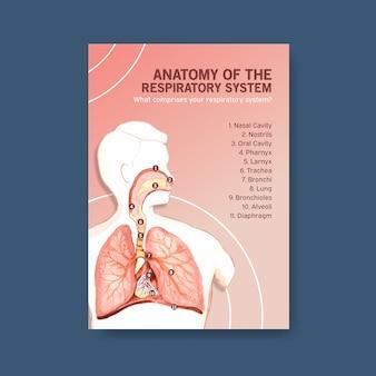 Informações sobre anatomia do sistema respiratório e compreensão de um sistema essencial