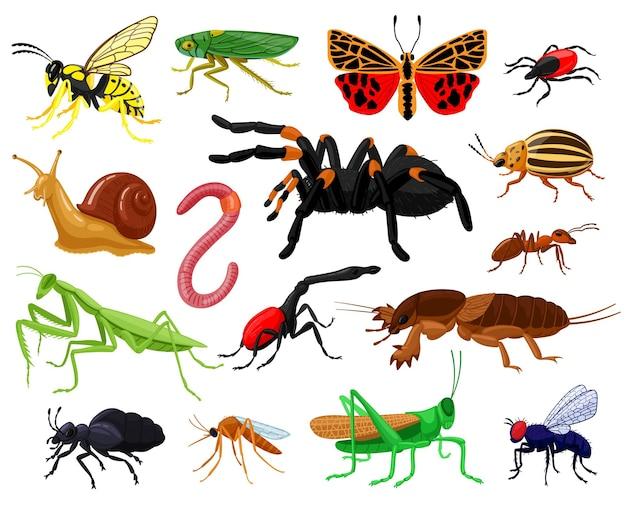 Insetos de desenhos animados. madeira e jardim bonitos insetos, borboleta, lagarta, aranha, joaninha e vespa. conjunto de mascotes de insetos de insetos. mosquito e borboleta, verme e libélula