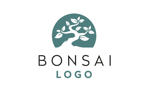 Inspiração de design de logotipo bonsai / árvore