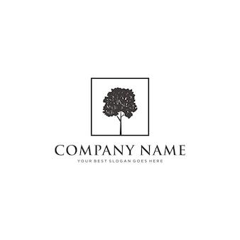 Inspiração do logotipo da árvore, modelo