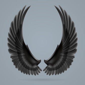 Inspirar asas