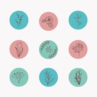 Instagram histórias desenhadas à mão floral destaca o conceito
