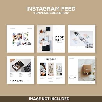 Instagram post coleção moderna de modelos limpos